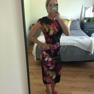 Ted Baker London floral rainbow pencil dress